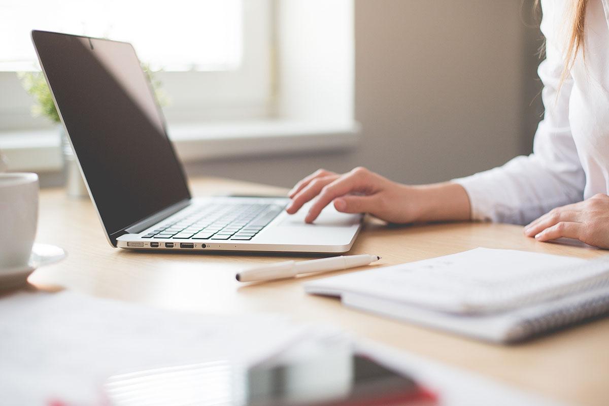 Immagine raffigurante una persona al computer